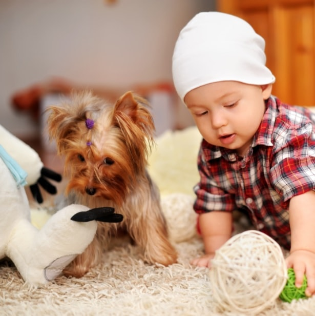 benefits of children and dogs together