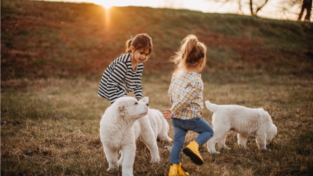 benefits of kids and dogs