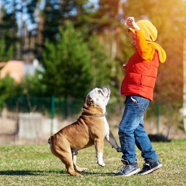 dogs and children for health