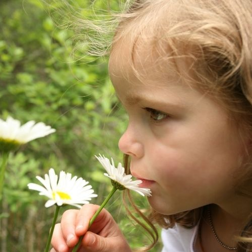 mindfulness exercise with your toddler using senses